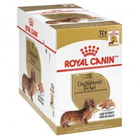 Royal Canin Dachshund Adult Wet Dog Food Pouch