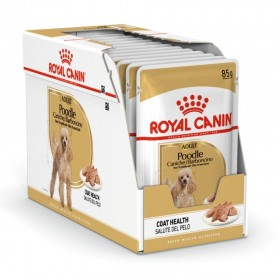 Royal Canin Poodle Adult Wet Dog Food Pouch